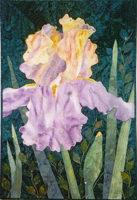 Iris (After the Rain)
